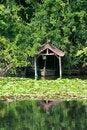 Free Japanese Pond Stock Photos - 16244333