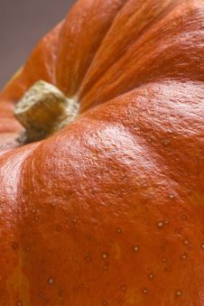 Free Pumpkin Royalty Free Stock Photography - 16241097