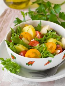 Free Vegetable Salad Royalty Free Stock Images - 16241499