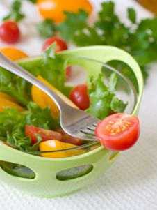 Free Tomato On Fork Stock Images - 16241544
