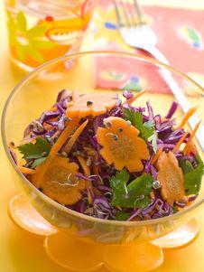 Free Vegetable Salad Stock Photo - 16241570