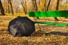 Free Umbrella In A Park Royalty Free Stock Photography - 16242697