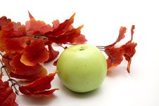 Free Red Leaves And Apple Stock Photo - 16244290