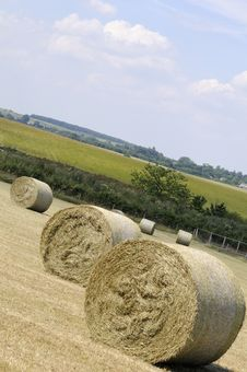 Hay Bales Waiting On Fields Royalty Free Stock Images