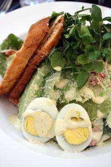 Free Caesar Salad Royalty Free Stock Photography - 16246297