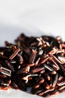 Free Natural Milled Red Gaba Rice Royalty Free Stock Photo - 16246915