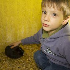 Free Kid And Rabbit Royalty Free Stock Photo - 16247545