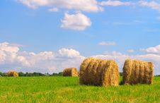 Free Straw Bales On Field Royalty Free Stock Images - 16247869