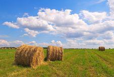 Free Straw Bales On Field Royalty Free Stock Photo - 16247925