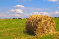 Free Straw Bales On Field Royalty Free Stock Images - 16248039
