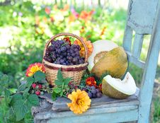 Free Autumn Harvest Stock Photo - 16248610