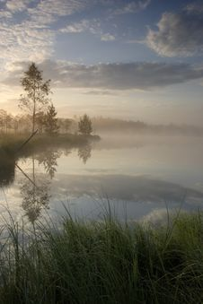Free Bog Lake Early Morning Summer Stock Photos - 16249643