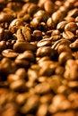 Free Coffee Beans Royalty Free Stock Photo - 16252025