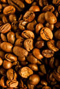Free Coffee Beans Royalty Free Stock Photography - 16252117