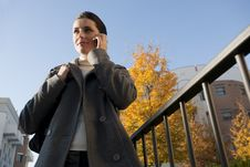 Free Young Woman On The Mobile Phone Stock Photo - 16250340