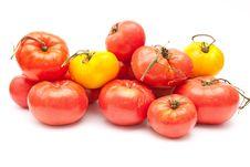 Free Eco Tomatoes Royalty Free Stock Photo - 16250445