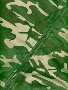 Free Camouflage Background Royalty Free Stock Images - 16250719