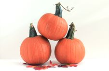 Free Three Pumpkins - Isolated Royalty Free Stock Photos - 16250968