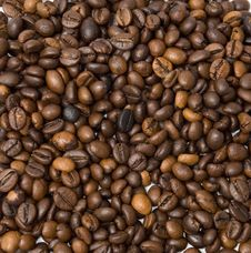 Free Coffee Stock Images - 16252014