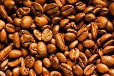 Free Coffee Beans Stock Photo - 16252070