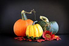 Free Autumn Still Life Royalty Free Stock Image - 16252886