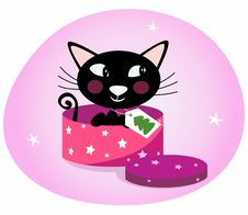 Black Christmas Kitten In A Pink Gift Box Royalty Free Stock Photo