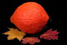 Free Autumn Royalty Free Stock Photography - 16253037