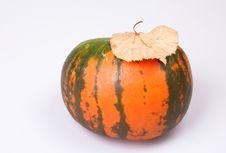 Free Autumn Stock Photo - 16253050