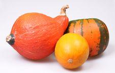 Free Autumn Stock Photo - 16253120
