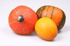 Free Autumn Stock Image - 16253131