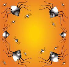 Free Spider Background Stock Image - 16253901
