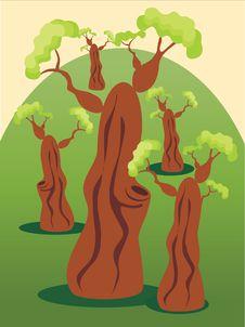 Free Tree Royalty Free Stock Photo - 16253905