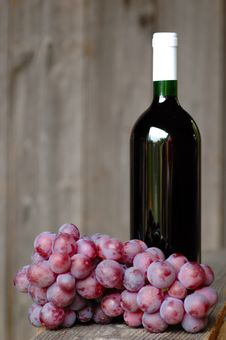 Free Wine Royalty Free Stock Images - 16254469