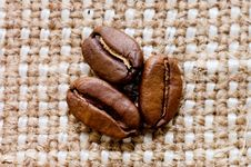 Free Brown Coffee Grains On A Sacking Stock Photos - 16254533