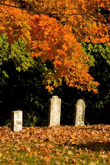 Free Spooky Graveyard In Fall Stock Images - 16254674