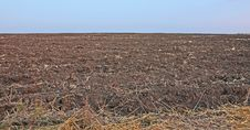 Arable Field Royalty Free Stock Images