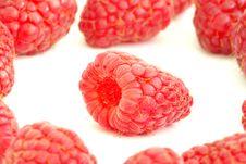 Free Raspberry Stock Photo - 16255470