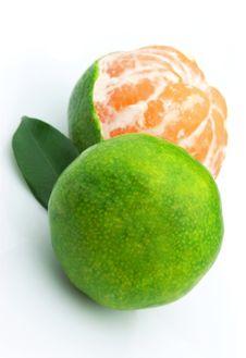 Free Green Sweet Tangerines Royalty Free Stock Image - 16255696