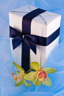 Free Gift Royalty Free Stock Photos - 16255828