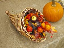 Free Harvest Decoration Royalty Free Stock Photography - 16258037