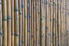 Free Bamboo Fence, Thailand. Royalty Free Stock Image - 16259216