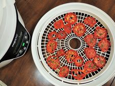 Free Dried Tomato Slices Near Dehydrator Stock Photography - 162502022