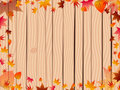 Free Autumn Background Over Fence Stock Photography - 16263282