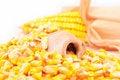 Free Fresh Corn Stock Photos - 16265323