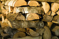 Free Logs Stock Photography - 16266592