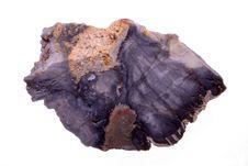 Free Petrified Wood Stock Photography - 16262702