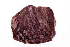 Free Petrified Wood Stock Image - 16262721