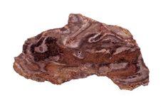 Free Petrified Wood Stock Photography - 16262902
