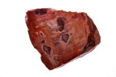 Free Petrified Wood Royalty Free Stock Image - 16262946