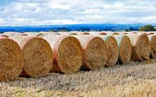 Free Straw Bales Royalty Free Stock Photography - 16263707